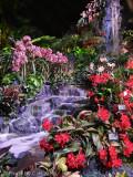 2012 Philadelphia Flower Show Hawaii