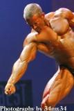 2007 bodybuilding