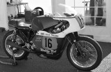 Wobbly Bob Racing Triumph