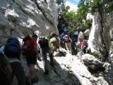 12. 08. 2012. Bijele stijene