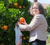 Kathy Rippy and the Orange Tree