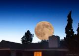 Moon over Verano.jpg