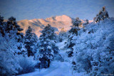 Pikes Peak Revisited
