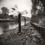 2011 - Autumn at Twickenham - Scan-110505-0023.jpg