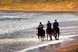 Three Horsemen