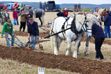 Vintage Ploughing Competition