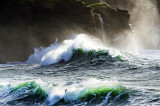 White Horses on Green Water
