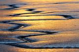 Mudflat Rivulets 3