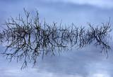 Burren Reflections 2