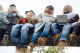 Scarecrow Picnic