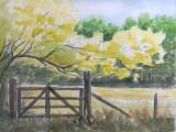 HANJA - Landschap met hek (aquarel) - 0732.jpg