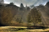 Early spring walk along Rotsee