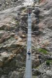 «Area_Great_Aletsch_Glacier»