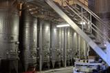 White Wine Fermenting Room