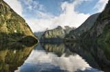 New Zealand, Doubtful Sound Rain Forest