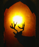 Deer Idea