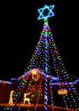 Oh Hanukkah Tree
