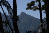 REGUA - southeast Brazil