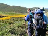 1Blooming Meadow.jpg