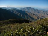 1Nearing Laguna Summit.jpg