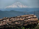 1Mt. Shasta from Hat Creek Rim.jpg