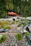 Cabin Eleven