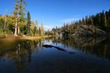 1Lower Larch Lake.jpg