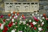 In the Bishops Garden