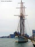 Toronto Harbour Front
