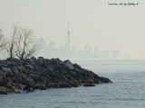 Misty Toronto Skyline