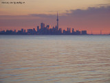 Toronto skyline in the distance