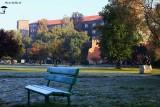 October Morning Chill