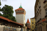 Old Town's Defensive Wall