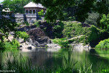 Turtle Pond in Central Park