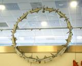Bonefish Daisy Chain At Miami Airport 3303.jpg