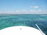 The skiff's bow....this is where you stand and talk to bonefish 3049.jpg