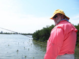 John deals with mangroves in his casting 3096.jpg