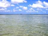 Vast Marls of Abaco's West 3134.jpg