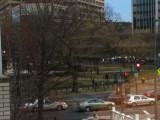 DC pics-misc march 11 023.jpg
