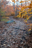 Blue Hill Mountain Trail #2