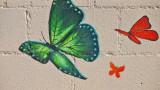 Butterflies at the Laundromat