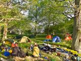 Vårt läger under ekarna