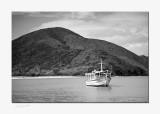 margarita_island