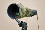 Nikon V1 with Nikon 300mm f/2.8 VR II + TC20-E III (via FT-1 adapter)  #2