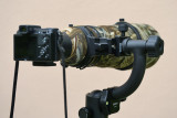 Nikon V1 with Nikon 300mm f/2.8 VR II + TC20-E III (via FT-1 adapter)  #3