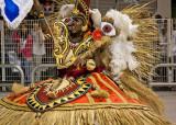 carnaval2011-65.jpg
