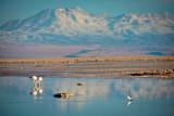 Atacama-209.jpg