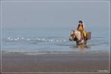 De Paardenvissers - Oostduinkerke
