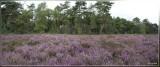 panorama 3395+3396+3397kopie.jpg