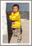 China 2011 - 2012